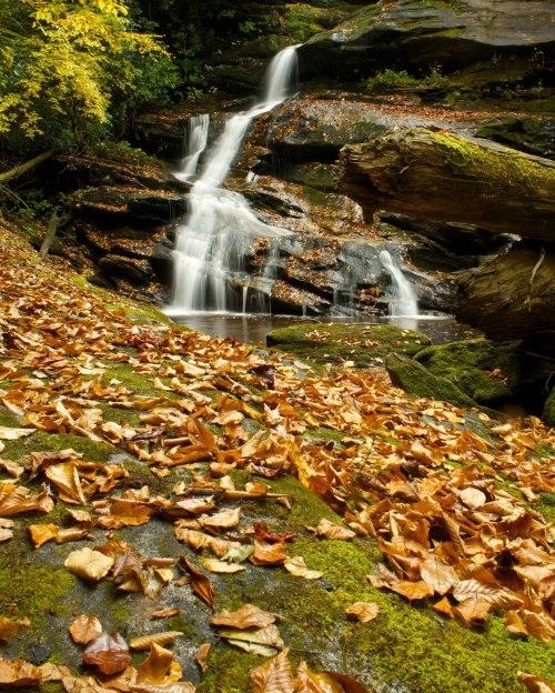 Hidden Falls Autumn, Panthertown Valley