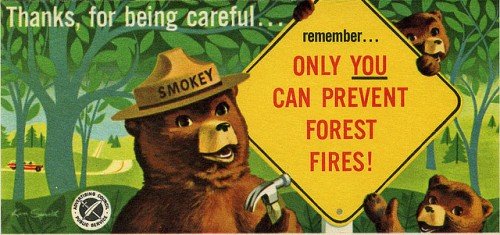 "Smokey Bear Sign ""Only You"""