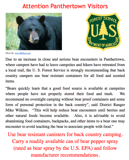 Panthertown Bear Alert