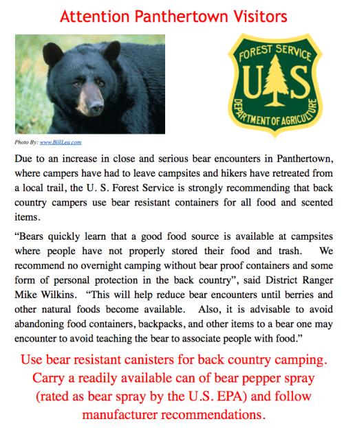Panthertown Bear Alert